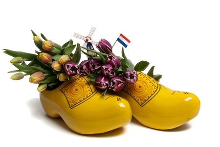 The tulip is the most succesful export product of The Netherlands photo