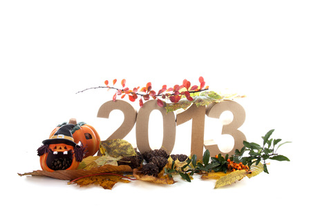 Year in numbers with autumn leaves and other product for New Year Stock Photo - 24051274