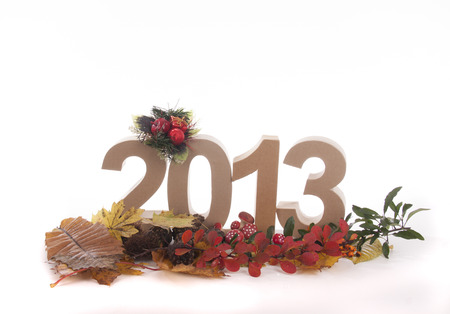 Year in numbers with autumn leaves and other product for New Year Stock Photo - 24051281