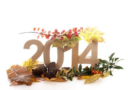 two thousand and fourteen: Year in numbers with autumn leaves and other product for New Year