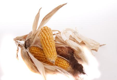 mais: Mais and popcorn against white