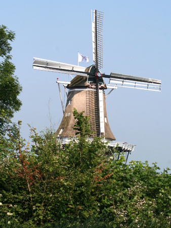 ee: Netherlands, Friesland,juni,2016: Dokkum is an fortifeid towwn with two windmills along the river Ee