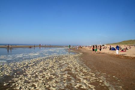 Netherlands,Bergen aan Zee, june 2016: Beach life along the Dutch North Sea cost in the summertime
