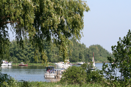 Netherlands,The Biesbosch,june 2016 : The Biesbosch National Park, consists of a rather large network of rivers and smaller and larger creeks with islands. Editorial