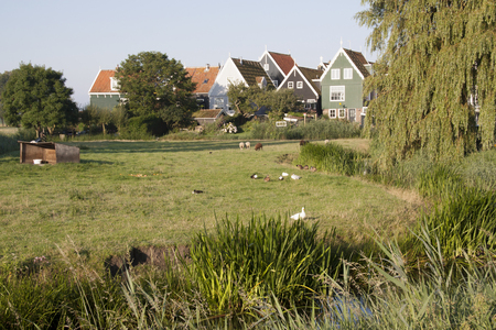 Netherlands,North Holland,Marken: Residential area on elevated ground, Yard called 写真素材