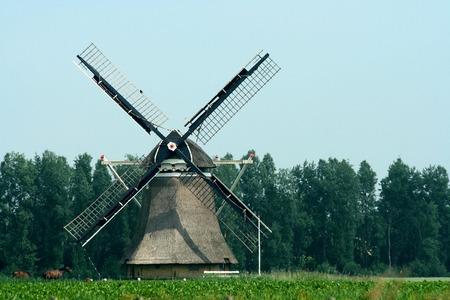Netherlands,Friesland,Marrum, june2016:  The Great Mill is a smock mill in Marrum,