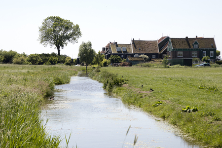Netherlands,North Holland,Marken:ditch in rural surrounding meadows and rural land in the island of Marken 写真素材