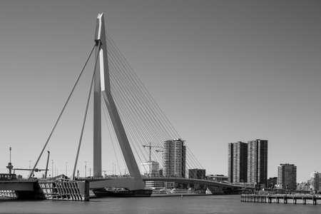 Rotterdam sky line with the Erasmus bridge