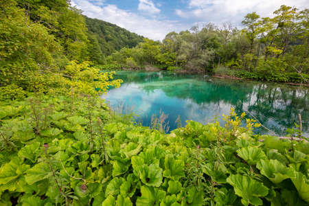 Plitvice lakes national park in cenytre of Croatia - hidden lake