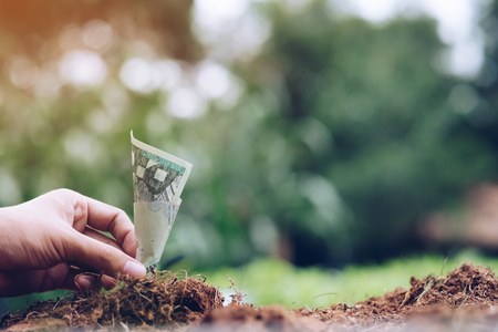 hand holding Money growing on soil with green background. business growth concept