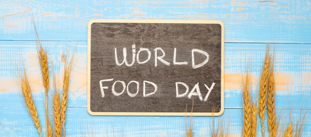 World Food Day Concept (October 16), Black chalkboard with handwritten words and Wheat ears grain on blue wooden background. Top view and Copy space for your text