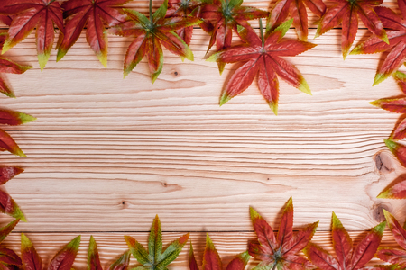 Autumn Maple leaves on wooden background. Top view and Copy space for your text