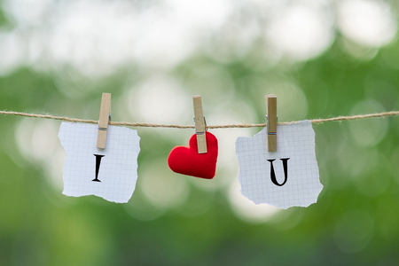 I LOVE YOU word on paper and red heart shape decoration hanging on line with copy space for text on green nature background. Love Wedding Romantic and Happy Valentine' s day holiday concept