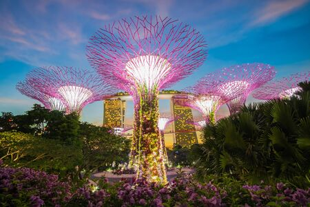 The Beautiful sunset Supertree groove at gardens by the bay with Marina Bay Sands hotel in Singapore. landmark and popular for tourist attractions. Singapore, 9 May 2019 에디토리얼