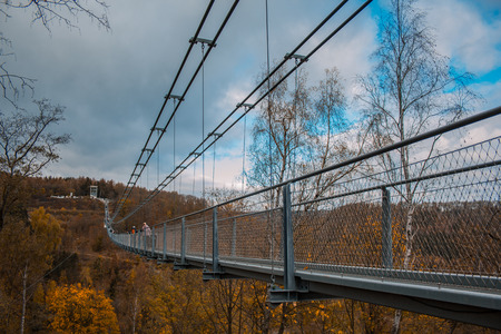 Titan RT suspension bridge in Harz Mountains National Park, Germany Фото со стока