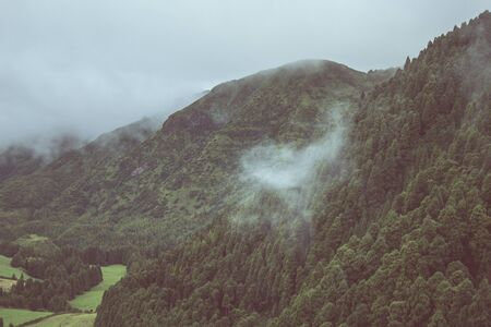 view over cloudy forest on Sao Miguel Island, Azores, Portugal 免版税图像