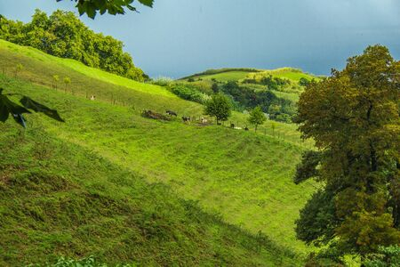 beautiful fields and landscape on the island of Sao Miguel, Azores, Portugal