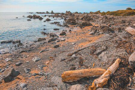 wild coastline at East Cape region, North Island, New Zealand