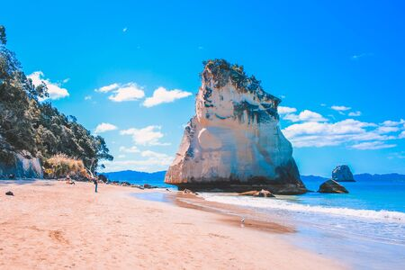 Cathedral Cove on the Coromandel Peninsula, North Island, New Zealand 스톡 콘텐츠