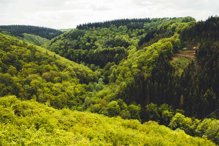 Hunsrück Mountain Range in Rhineland-Palantinate, Germany. Beautiful green forest in Western Germany.