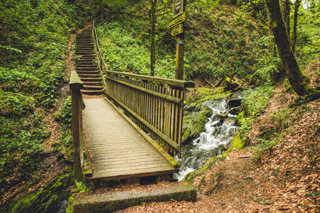 Hiking trail in German forest. Scenic footpath with wooden bridge in Rothaar Mountains in Northrhine-Westphalia state