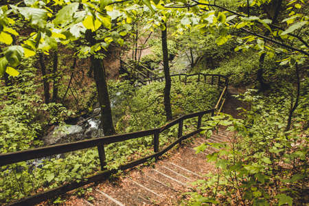 Hiking trail in German forest. Scenic footpath with steps and wooden railing in Rothaar Mountains in Northrhine-Westphalia state Imagens