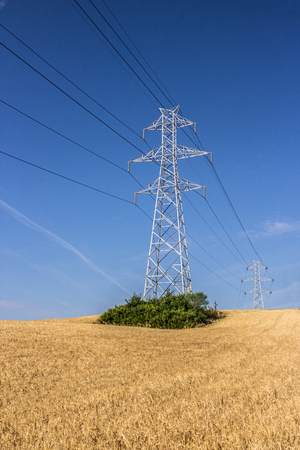 High voltage pylon in a wheat field