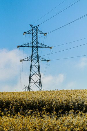 High voltage tower in a field of rapeseed Stock Photo