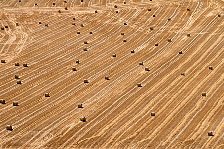 Strohballen in Curiel de Duero Standard-Bild - 70766737