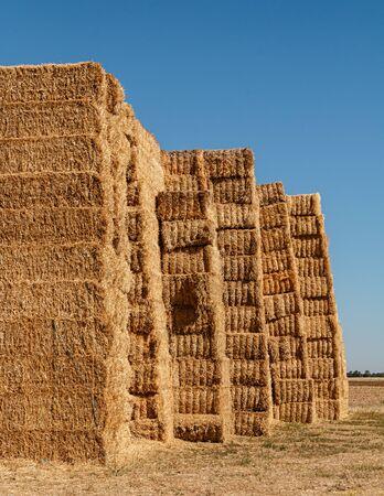 Straw bales at Ribera de Duero fields Standard-Bild - 133739454
