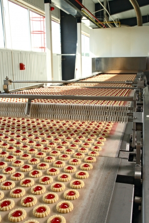production cookie in factory Stock Photo - 20778105