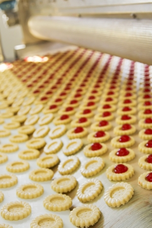 production cookie in factory Stock Photo - 16475039