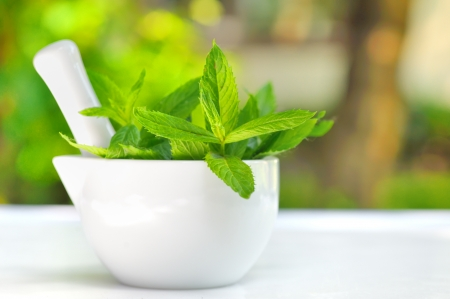 mortar and pestle medicine: Mortar and mint leaves