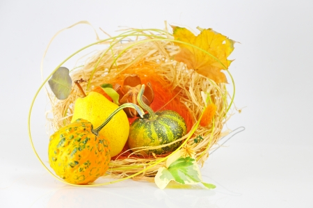 Autumn's basket Stock Photo - 16475773