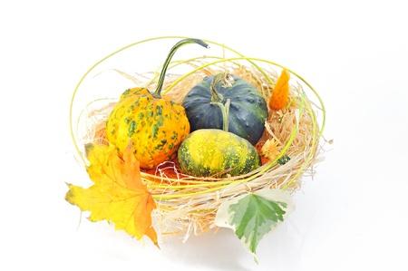 Autumn's basket Stock Photo - 16475434