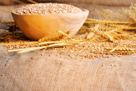 wheat seeds on rough material Stock Photo - 16480386