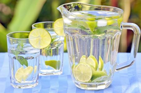 sour grass: Fresh lemonade and mint