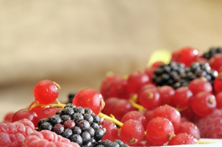 fresh berries Stock Photo - 16475375
