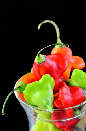 hot chili peppers Stock Photo - 16481849