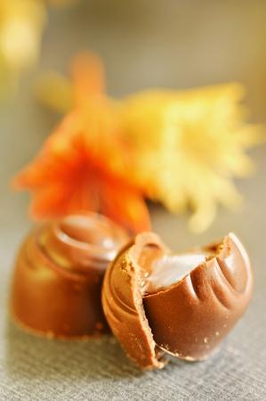 chocolate candies Stock Photo - 16481638