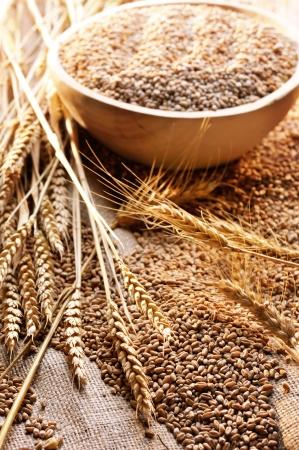 wheat bowl Stock Photo - 16482493