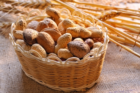 Assortment of nuts Stock Photo - 16482492