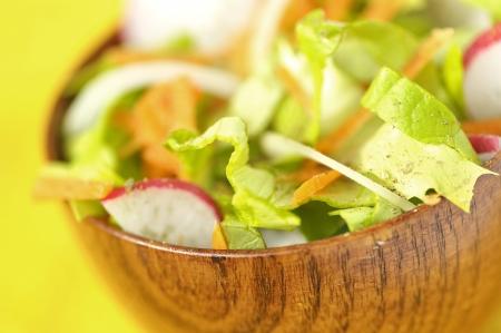 carot: Healthy Salad  Stock Photo