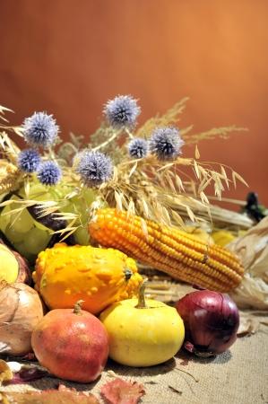 autumn arrangement: autumn arrangement with fruits and vegetables