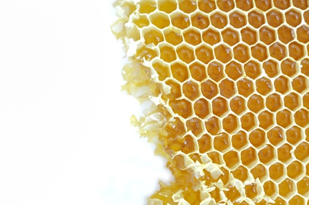 Honeycomb background Stock Photo - 16482764