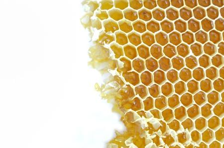 Honeycomb background Stock Photo - 16482764
