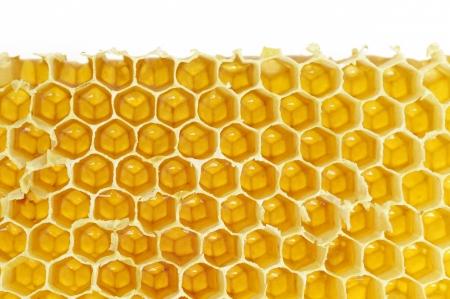 Honeycomb background Stock Photo - 16481437