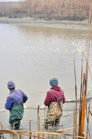 fishermen netting fish Stock Photo - 16425515