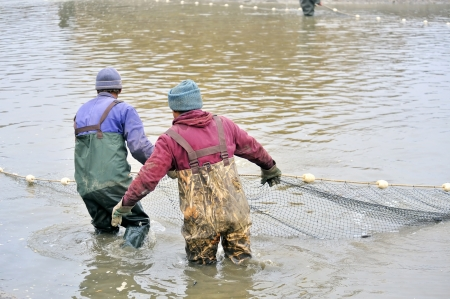 fishermen netting fish Stock Photo - 16425517