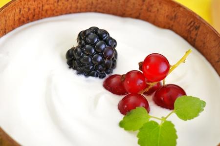 Yogurt with fruits Stock Photo - 16482538
